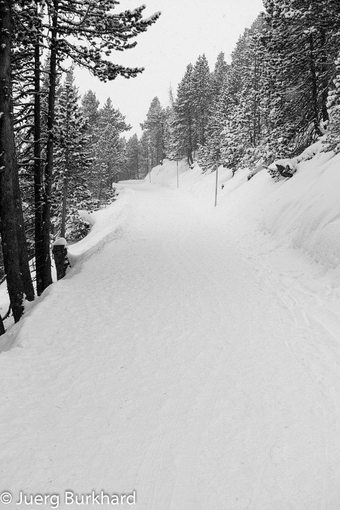 Weg zum Weisshorn
